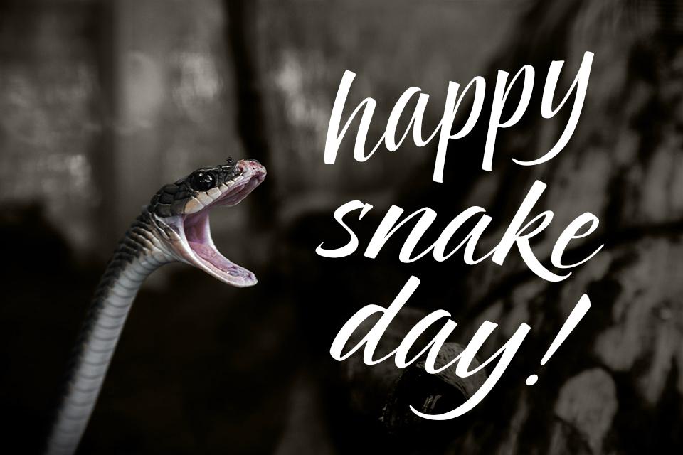 happy snake day 2018