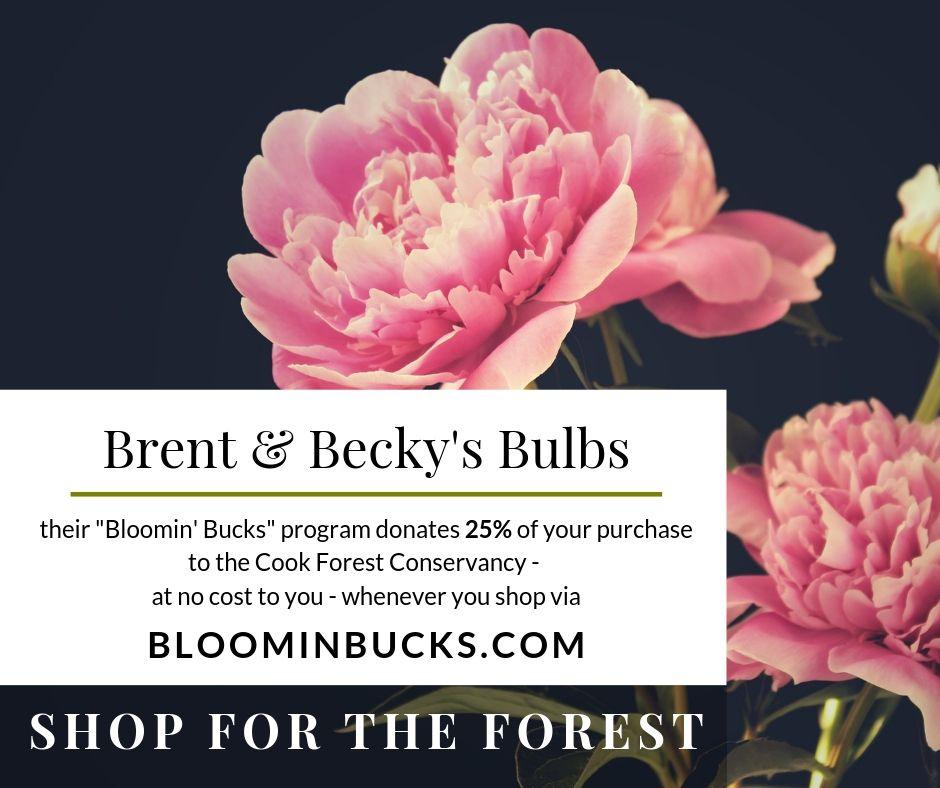 Brent & Becky's Bulbs for the CFC
