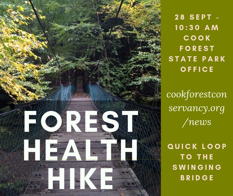 Cook Forest Hike - 28 Sept 10 am