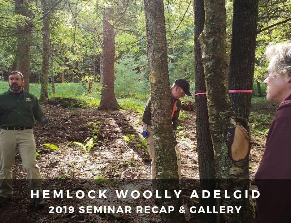 2019 HWA Seminar recap