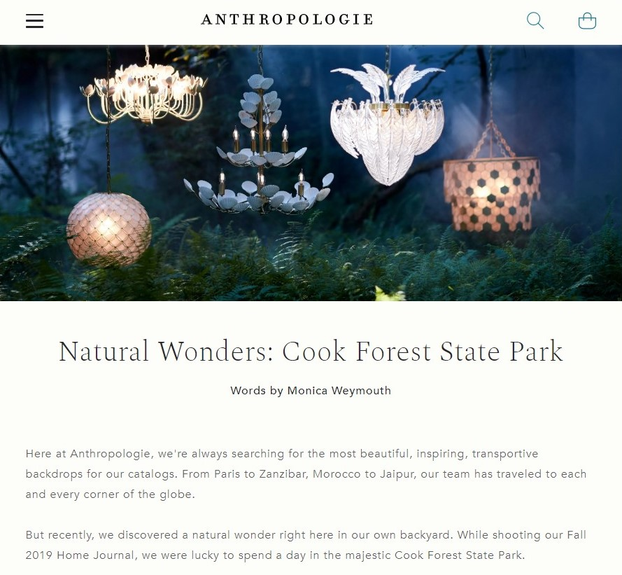 Anthropologie in Cook Forest
