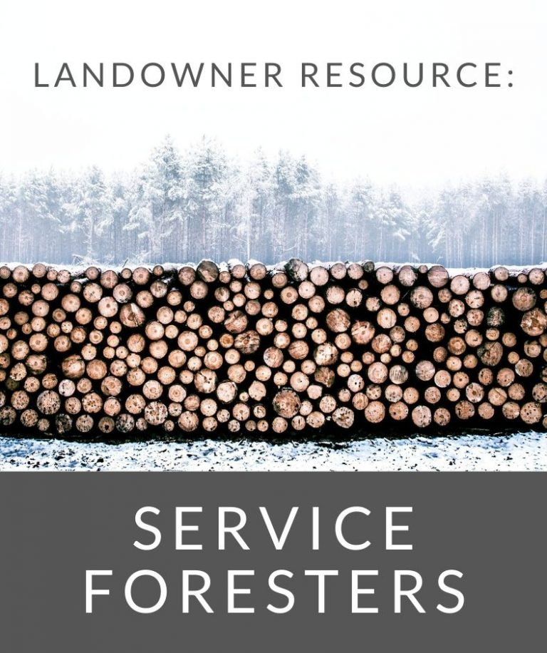 PA DCNR service forester program for landowners