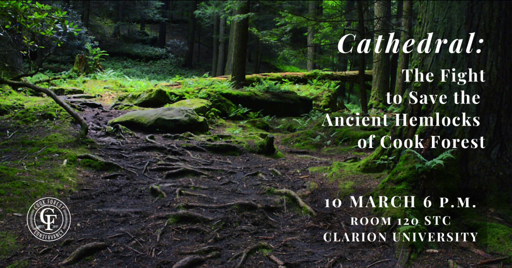 Cathedral - the Fight to Save the Ancient Hemlocks of Cook Forest - Wild Excellence Films - 03/10/20 CUP