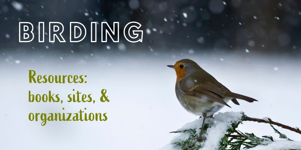 Birdwatching Resource List - Cook Forest Conservancy - Birding Essentials