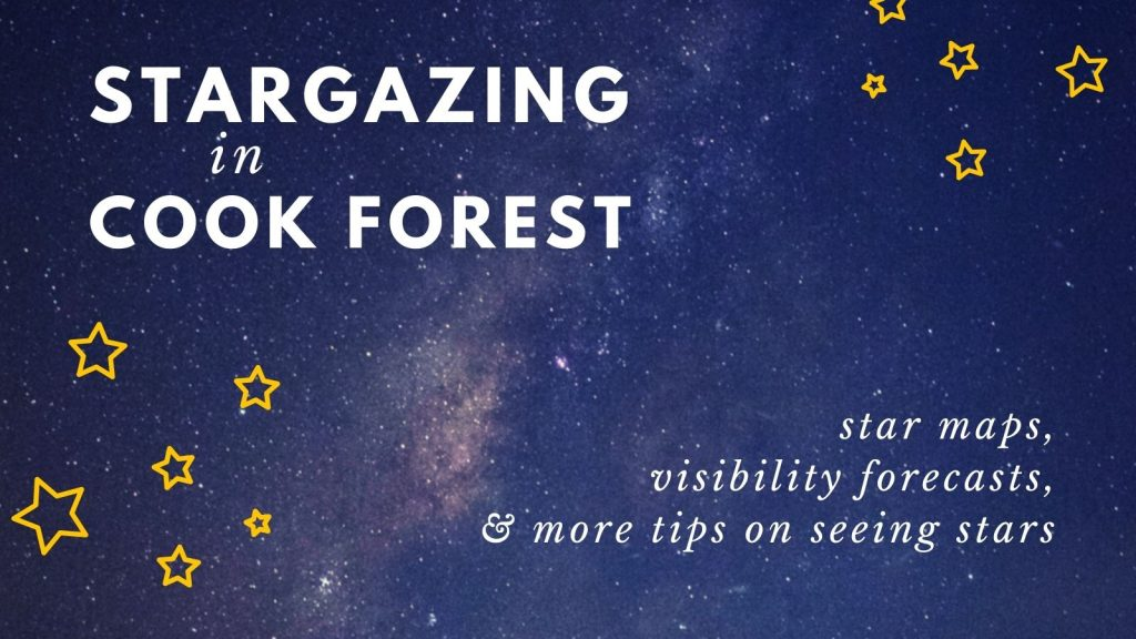 guide to stargazing in Cook Forest State Park, PA