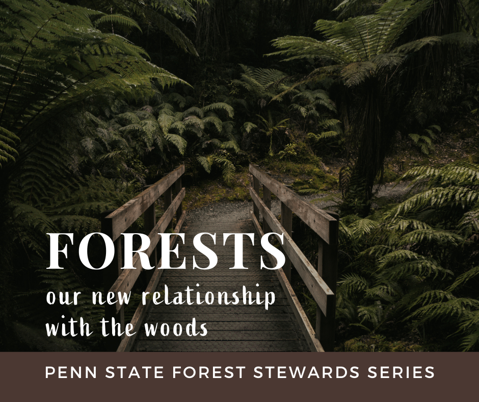 2021-03 PAFS article Jim Finley on the True Value of Forests